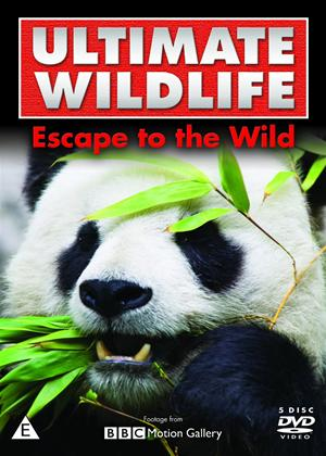 Rent Ultimate Wildlife: Escape to the Wild Online DVD Rental