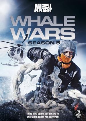 Rent Whale Wars: Series 5 Online DVD Rental