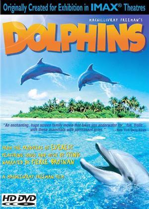 Rent Dolphins Online DVD Rental