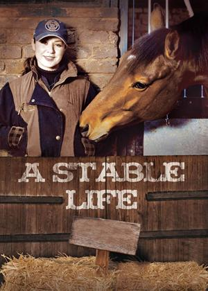 Rent A Stable Life Online DVD & Blu-ray Rental