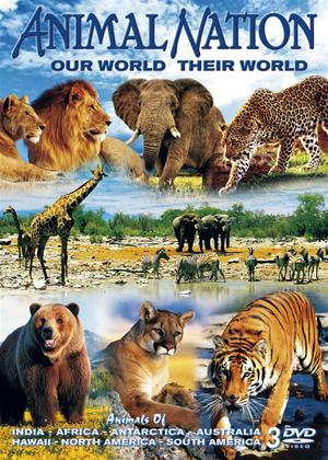 Rent Animal Nation: Our World, Their World Online DVD Rental