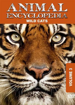 Rent Animal Encyclopedia: Vol.3: Wild Cats Online DVD Rental