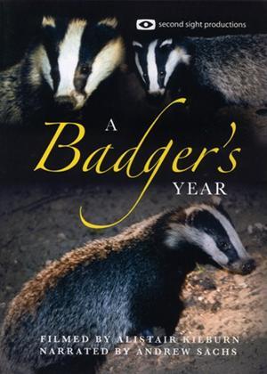 Rent A Badger's Year Online DVD Rental