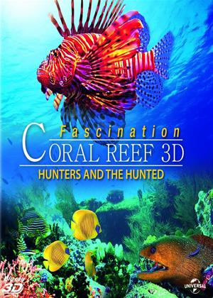 Rent Fascination Coral Reef 3D: Hunters and the Hunted Online DVD Rental