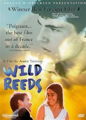 Rent Wild Reeds (aka Les roseaux sauvages) Online DVD Rental
