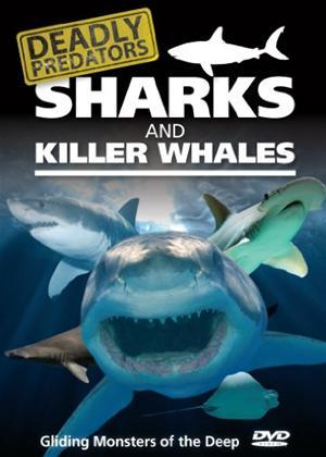 Rent Deadly Predators: Sharks and Killer Whales Online DVD Rental