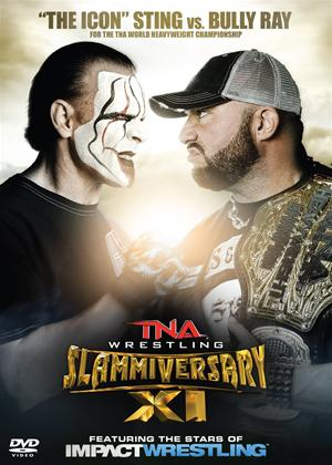 Rent TNA Wrestling: Slammiversary 2013 Online DVD Rental