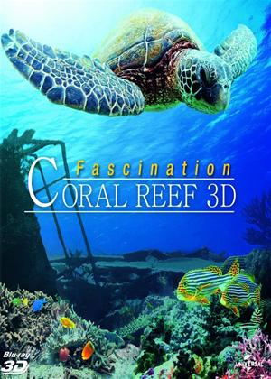 Rent Coral Reef 3D Online DVD Rental