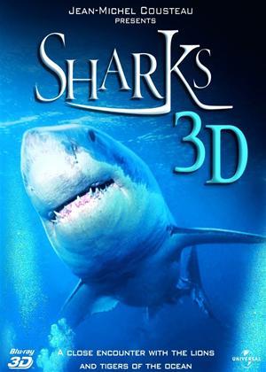 Rent Sharks 3D Online DVD Rental