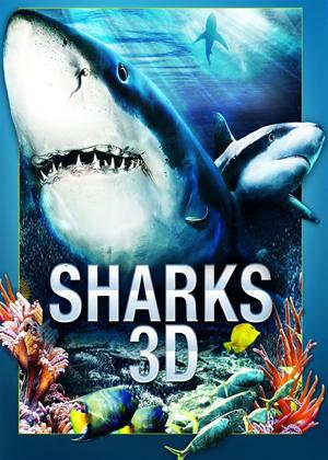 Rent Sharks Online DVD Rental