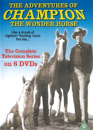 The Adventures of Champion: Series Online DVD Rental