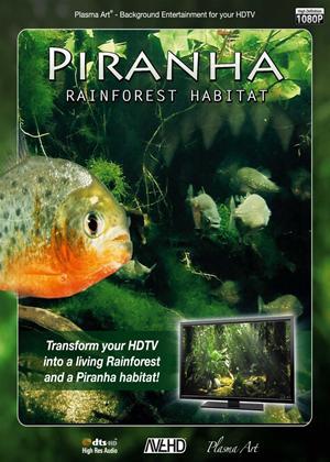 Rent Plasma Art: Piranha: Rainforest Habitat Online DVD Rental