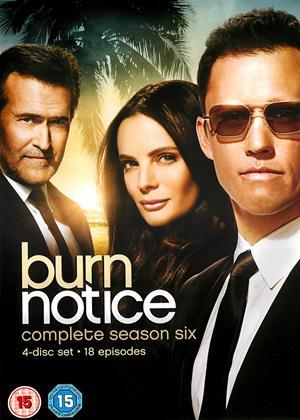 Rent Burn Notice: Series 6 Online DVD Rental