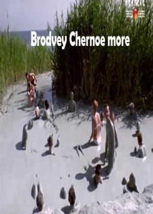 Rent Broadway. Black Sea (aka Brodvey. Chernoe More) Online DVD Rental