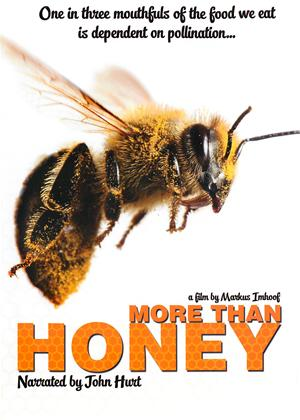 Rent More Than Honey Online DVD Rental