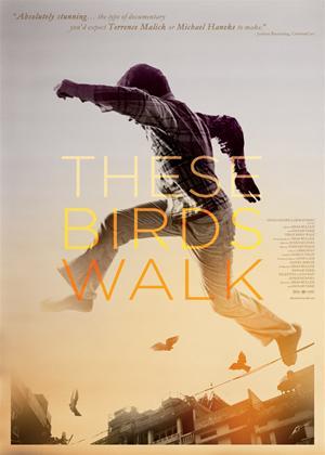 Rent These Birds Walk Online DVD Rental