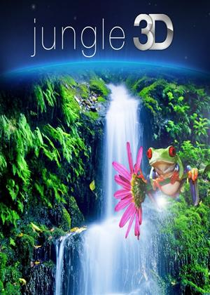 Rent Jungle Online DVD Rental