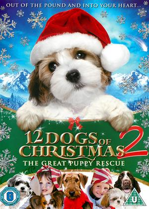 Rent 12 Dogs of Christmas: Great Puppy Race Online DVD Rental