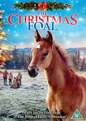 Rent The Christmas Foal Online DVD Rental