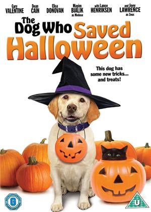 Rent The Dog Who Saved Halloween Online DVD Rental