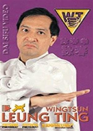 Rent Wing Tsun: Correcto O Incorrecto? Online DVD Rental
