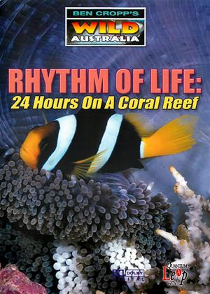 Rent Rhythm of Life: 24 Hours On a Coral Reef (aka Ben Cropp's Wild Australia: Rhythm of Life) Online DVD Rental