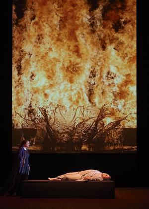 Rent Tristan Und Isolde: Opera De Paris Online DVD Rental