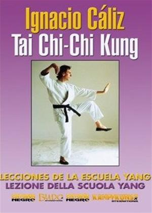 Rent Tai Chi: Yang Style and Chi Kung: Vol.1 Online DVD Rental