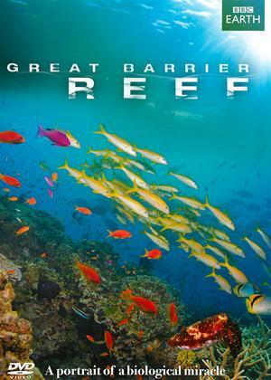 Rent Great Barrier Reef Online DVD Rental