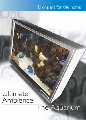 Rent Ultimate Ambience: The Aquarium Online DVD Rental