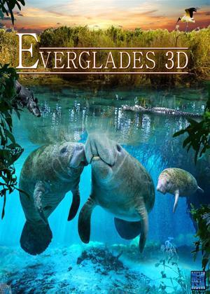 Rent Everglades Online DVD Rental