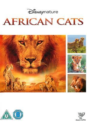 Rent African Cats Online DVD Rental