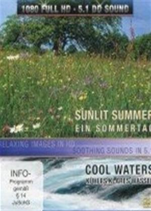 Rent Four Seasons: Sunlit Summer Online DVD Rental