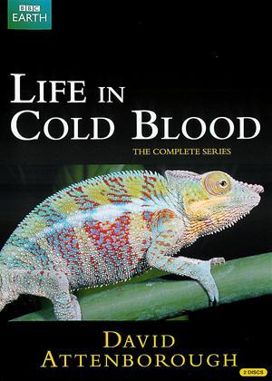 Life in Cold Blood: Series Online DVD Rental