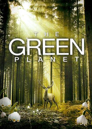 Rent The Green Planet (aka Das grüne Wunder - Unser Wald) Online DVD Rental
