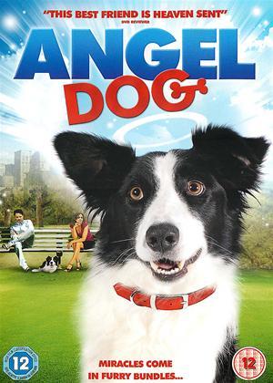 Rent Angel Dog Online DVD Rental