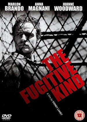 Rent The Fugitive Kind Online DVD Rental