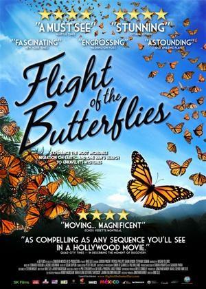 Rent Flight of the Butterflies Online DVD Rental