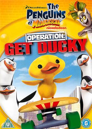 Rent The Penguins of Madagascar: Operation Get Ducky Online DVD Rental