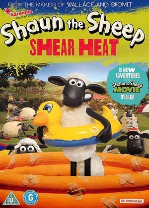 Rent Shaun the Sheep: Shear Heat Online DVD Rental