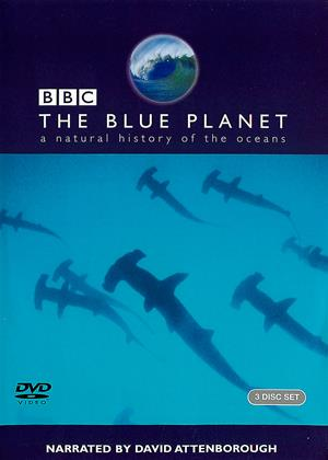 Rent The Blue Planet (BBC) Online DVD Rental