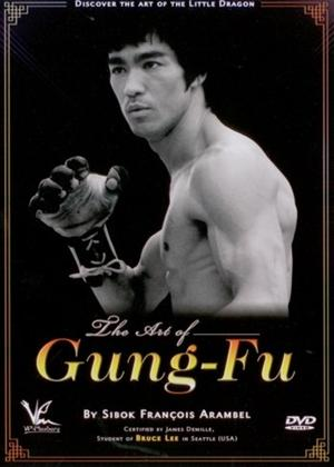 Rent The Art of Gung-fu: Discover the Art of the Little Dragon Online DVD Rental