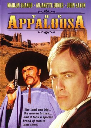 Rent The Appaloosa Online DVD Rental