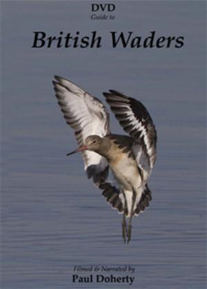 Rent British Waders Online DVD Rental