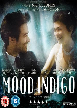 Rent Mood Indigo (aka L'écume des jours / The Foam of the Days) Online DVD & Blu-ray Rental