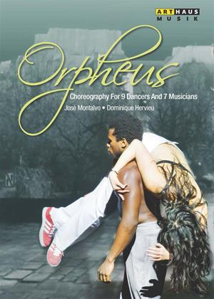Rent Orpheus Online DVD Rental