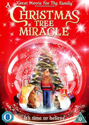 Rent A Christmas Tree Miracle Online DVD Rental