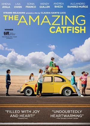 Rent The Amazing Catfish (aka Los insólitos peces gato) Online DVD & Blu-ray Rental