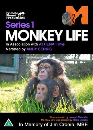 Rent Monkey Life: Series 1 Online DVD Rental