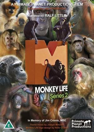 Rent Monkey Life: Series 2 Online DVD Rental